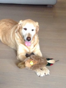 Queen with her new toy
